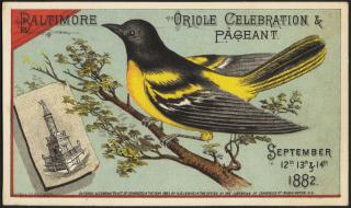 Baltimore, oriole celebration & pageant. September 12th, 13th & 14th, 1882. [front] by Flickr user Boston Public Library