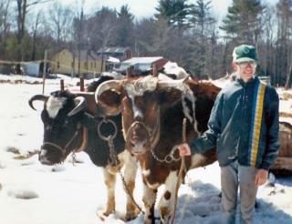 140. Nate, Ernie and Unknown Nigh Steer by Flickr user InAweofGod'sCreation